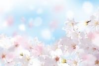春の入園&入学準備に! 新生活特集