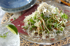 薬味野菜とシラスのサラダ