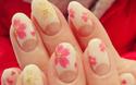 間もなく桜の開花!ひと足早く、指先に「さくら開花宣言」☆