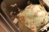 カリッとポテトのダッチブレッドの作り方2