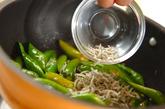 長唐辛子とジャコの炒め煮の作り方1