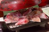 魚アラの香ばし焼きの作り方1