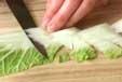 白菜のクリーム煮の下準備1