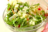 白菜の粒マスタード和えの作り方1