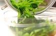 青菜の中華和えの作り方1