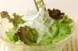 レタスと玉ネギのサラダの作り方2