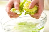 グリーンサラダの下準備1