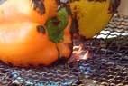 春キャベツのテリーヌ風の作り方2