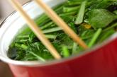 小松菜の中華和えの作り方1