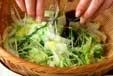 白菜のゴマ油香りお浸しの作り方1