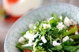 青菜のサラダ