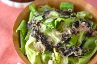 レタスのサラダゴマドレ