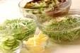 水菜のサラダの下準備1