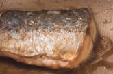 サワラの照焼き混ぜご飯の作り方1