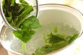塩クラゲとモヤシの酢の物の作り方1