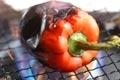 イカの和風サラダの作り方1