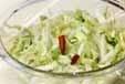 簡単白菜マリネの作り方1