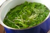 水菜のゴマ和えの作り方1