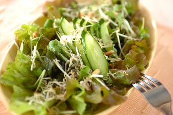 ジャコ豆腐サラダ