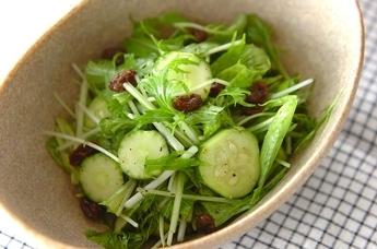 キュウリと水菜のサラダ