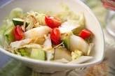 白菜と梨のサラダ