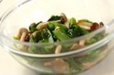 青菜のお浸しの作り方2