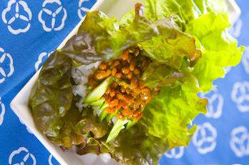炒め納豆サラダ巻き