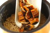 ウナギ蒲焼きの炊き込みご飯の作り方2