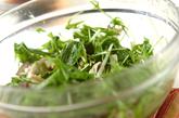 水菜と油揚げのXO醤和えの作り方1