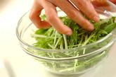 塩もみ水菜とツナのマヨ和えの作り方1