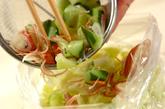 パリパリヘルシーサラダの作り方1