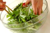 大根と水菜のサラダの作り方1