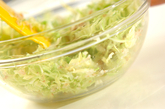 春キャベツの生春巻きの作り方1