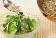 水菜のジャコサラダの作り方2