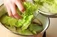 レタスのスープの作り方1