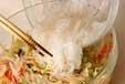 春雨のエスニックサラダの作り方2