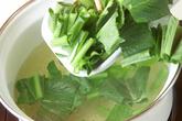 小松菜のみそ汁の作り方1