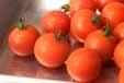 プチトマトシャーベットの下準備1