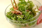 白菜のマスタード和えの作り方1
