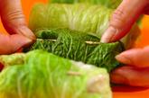 和風味のロール白菜の作り方2
