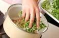 豆苗の卵汁の作り方1
