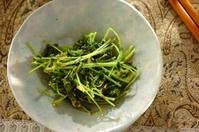 豆苗のしょうゆ麹炒め