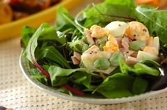 卵と枝豆のサラダ