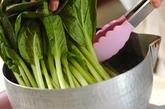 小松菜ペーストの下準備2