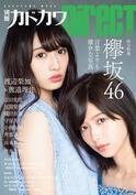 """欅坂46が誇る""""圧倒的顔面""""渡辺梨加&渡邉理佐がどこまでも美しい"""