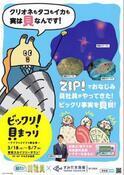 桝太一アナ、年パス所持の『すみだ水族館』とコラボ「貝ほど面白い生き物はいません!」