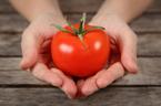 トマト美容がアツイ!美人になれる摂り方をチェック