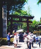今の時期に行くべきパワースポット・東京編「根津神社(文京区)」