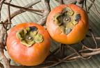"""意外と知らない!?ビタミンCの女王様・秋フルーツ代表""""柿""""で美肌をゲット!"""