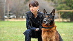戸田恵梨香、被災地でも活躍している警備犬のハンドラー役で市原隼人と共演